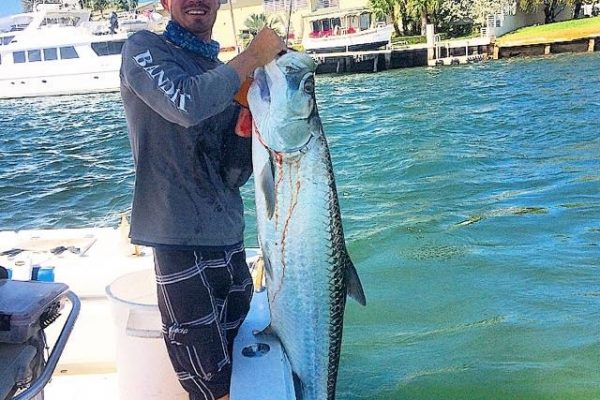 Capt. Robert with Fishing Headquarters with a nice tarpon caught in the Ft Lauderdale Intracoastal